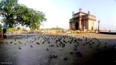 Gateway of India Image