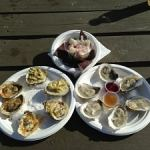 Oysters from Jolly Oyster