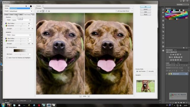 Imagenomic Realgrain 2.1.2 Descarga con un clic