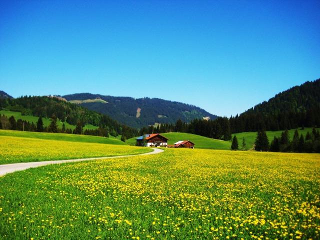 austria 26