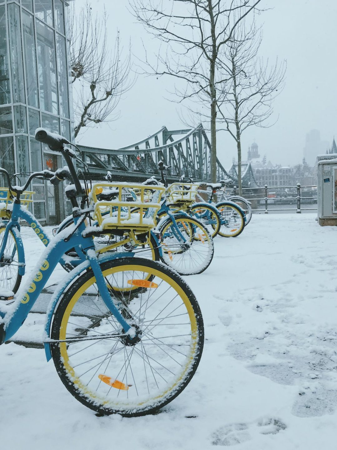 A set of bikes with snow on top.