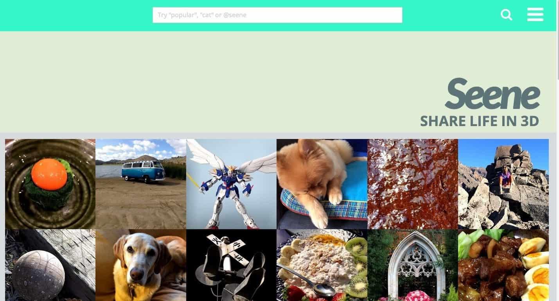 Seene Sharing site