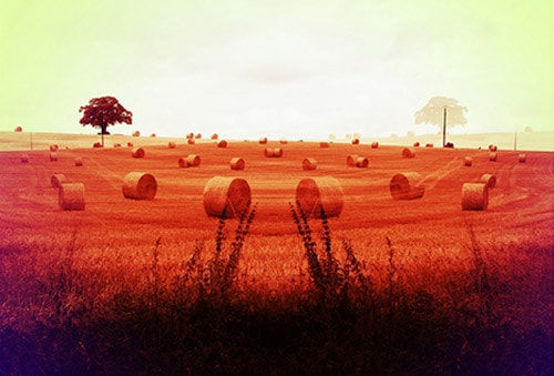 mirrored-haystack-olivier-degabriele