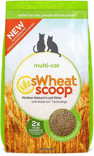 Non Toxic Organic Cat Litter