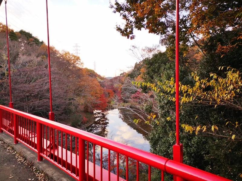 泉自然公園橋の上