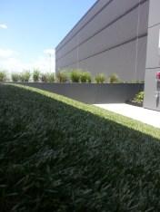 Fake Grass/Real Plants/Fresh Air