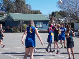 Round 2 of the games and the B netball team won their game.