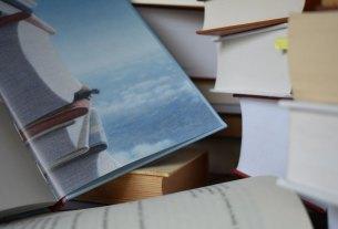 Rezonanse un pašvērtējums literatūrā