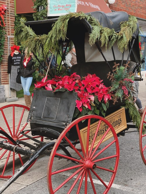 Our first Dickens of a Christmas on Franklin's Main Street. And we just couldn't wipe the smiles off of our faces. From the people to the music, it was the most amazing Christmas ambiance. Get a look into all the festivities over on Haus of Layne! #AmericasFavoriteMainStreet #ThingsToDoInNashville #ThingsToDoInNashvilleInDecember #ThingsToDoInNashvilleWIthKids #FranklinTennessee #FranklinTN #HistoricFranklinTN #FranklinTennesseeMainStreet #DickensOfAChristmasFranklinTN #ChristmasInTennessee #ChristmasInNashville #NashvilleBlogger #ThingsToDoInFranklinTN #ThingsToDoInFranklinTennessee