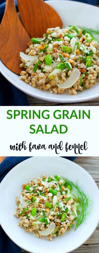 This spring grain salad with fava and fennel is made with toasted pearl barley and is chock full of refreshing seasonal produce and flavor.
