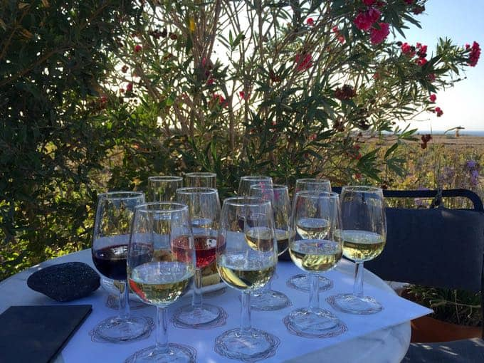 top 10 things to do on your honeymoon in greece. visit greek winery.