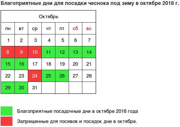 typy dátumové údaje