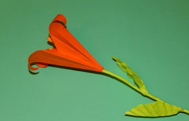 Paper Flowers & # 8212; Mga scheme at mga template para sa paglikha ng mga kulay ng papel 126.