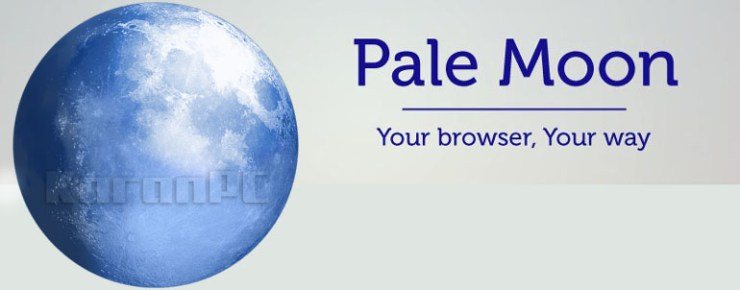 Pale Moon Free Download