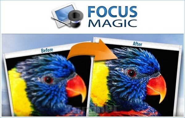 Focus Magic 4 Serial Key
