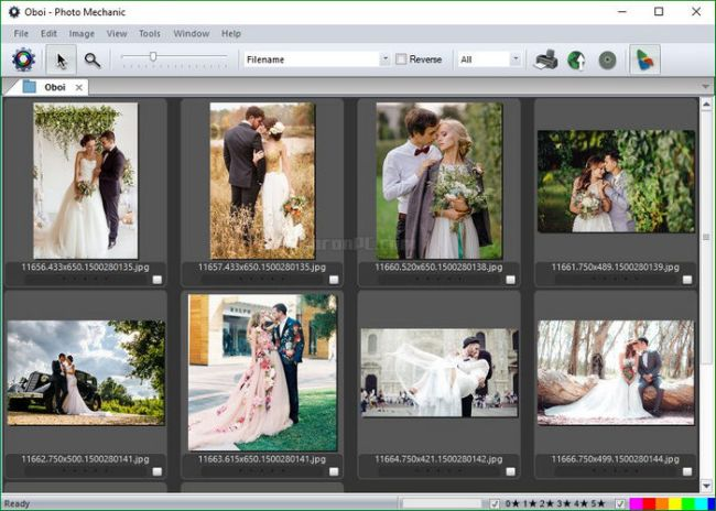 Photo Mechanic 6 Download