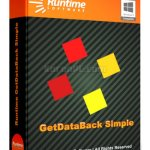 Runtime GetDataBack Simple 3.10 + Portable [Latest]