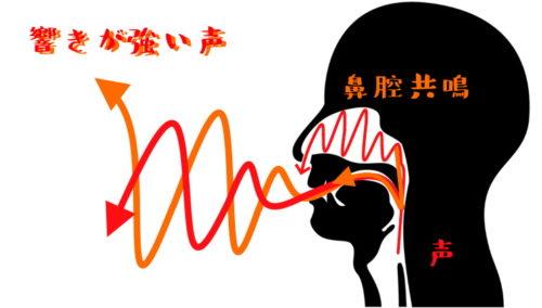 鼻腔共鳴した声のイメージ