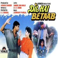 Dil-Hai-Betab-Hindi-1993-500×500