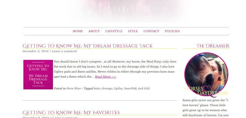 Horses & Daydreams Theme Development & Branding
