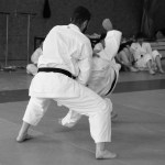 Le Kung-Fu et le Qi Gong arrivent au KDM à partir du 02 février