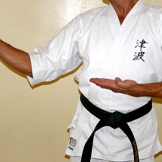 Ken-shuto-kyosen-kamae [widok z boku]