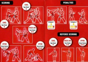 BASIC KARATE RULES