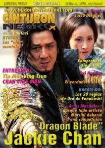 revista-artes-marciales-cinturon-negro-1-638