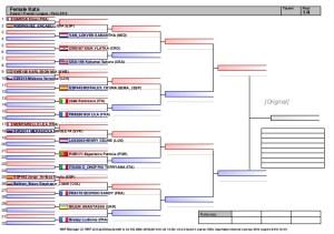karate1-premier-league-paris-2016kata-draws-1-638