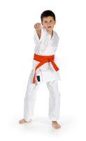 El autocontrol y la disciplina de karate pueden disminuir algunos de los síntomas del ADHD.