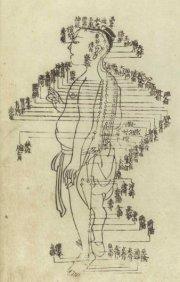 hua-shou-acupuncture-chart