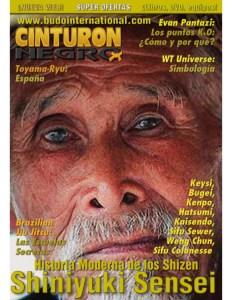 revista-artes-marciales-cinturn-negro-1-638