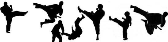 artes-marciales-collage