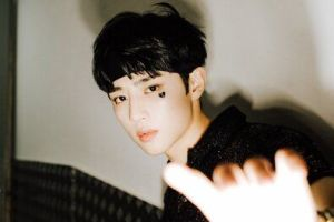Read more about the article SUNWOO (THE BOYZ)