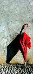 folded-umbrella