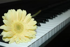 piano with flower