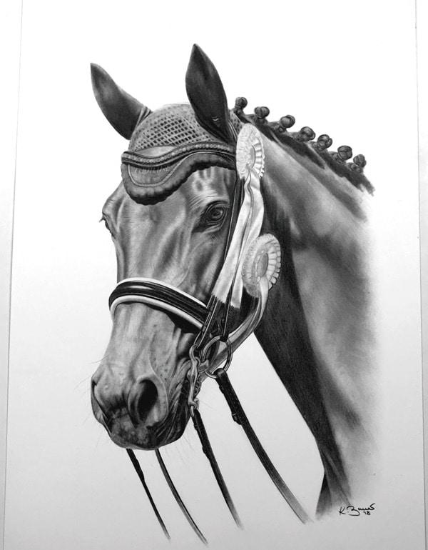 Pferdeportrait Entstehung Auftragszeichnung Pferd