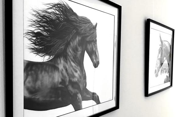 Kunst Pferd Zeichnung Liberty Kunstdruck Pferdesport
