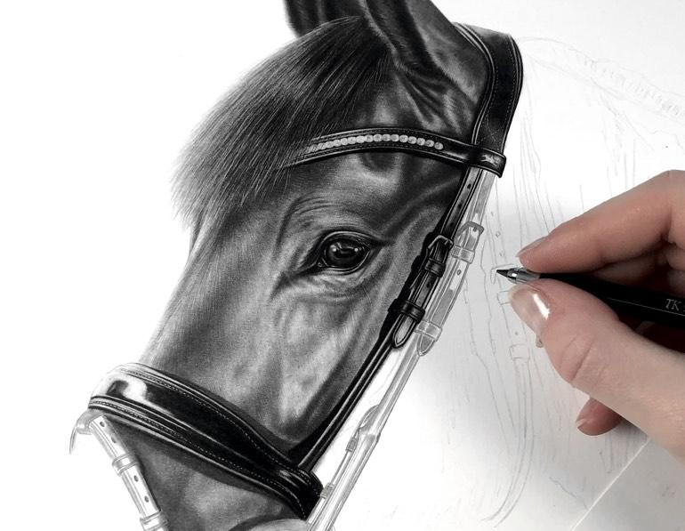 Pferd mit Bleistift zeichnen