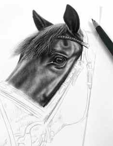 Bleistiftzeichnung im Auftrag