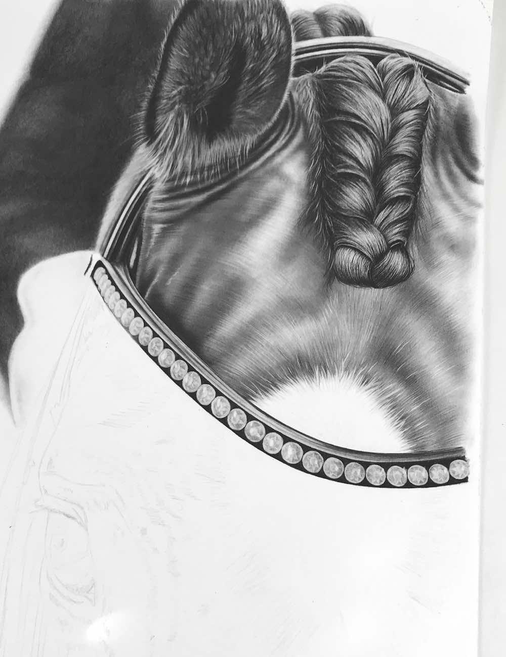 bleistiftzeichnung pferdekopf