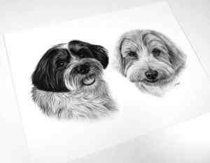 Collage Hund Zeichnung