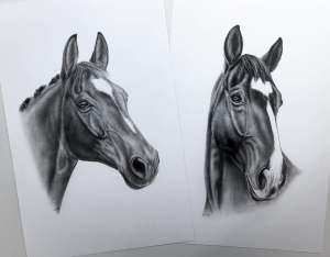 Doppelportrait Pferdezeichnung