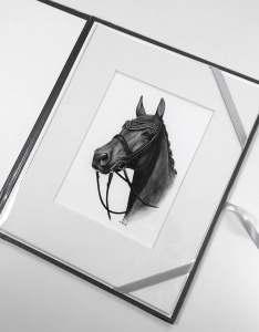 Kleines Pferdebild Zeichnung
