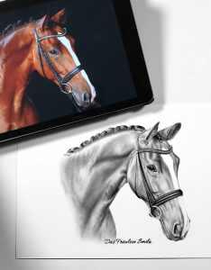 Nach Fotovorlage zeichnen Pferd