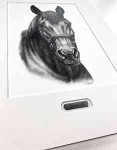Passepartout Gemäldeschild Pferd