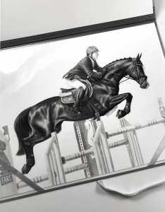 Pferd über Sprung Zeichnung