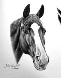 Pferd Abzeichen Laterne