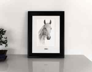 Pferdekopf Zeichnung Rahmen