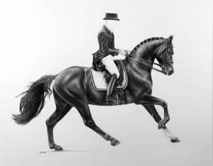 Pferdezeichnung starker Galopp